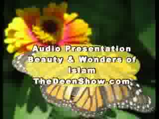 Abdur Raheem Green- Beauty and wonders of Islam Part 3-8