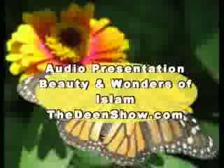 Abdur Raheem Green- Beauty and wonders of Islam Part 6-8