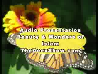 Abdur Raheem Green- Beauty and wonders of Islam Part 8-8