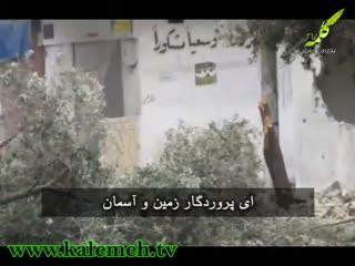 دفاع از مردم مظلوم سوریه(2)- (زخم خونین