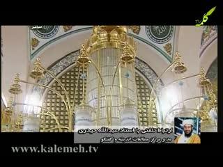 بهار قرآن (8)