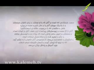 همگام با صحابه (17)