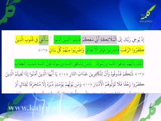 برنامه شبهای رمضان (16)