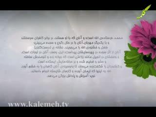 همگام با صحابه (25)
