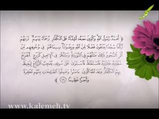 همگام با صحابه (28)