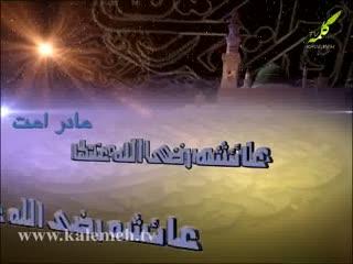 شیعه صفوی مذهب دروغ (11)