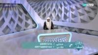 الخیل فی لغة العرب