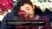 سوریه انقلاب تا آزادی