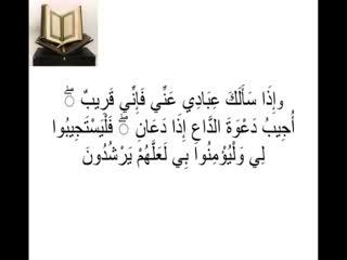 شیعه یا سنی (3)