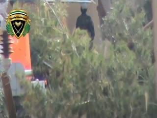 کشته شدن سرباز اسد در حال قضای حاجت!