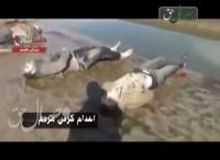 نقاب برداشته شد - در سوریه چه می گذرد .