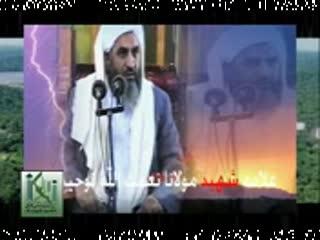 شهادت شیخ التفسیر مولانا نعمت الله توحیدی (ره)