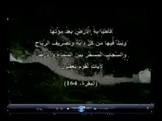 خرافه ستیزی با کمک قرآن و سنت (9)
