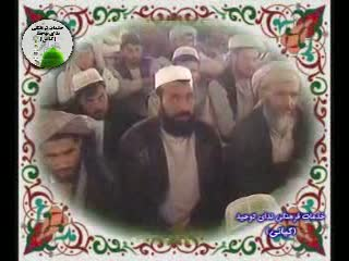همکاری و همبستگی در جامعه اسلامی