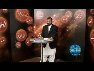 اسماء حسنی (4)