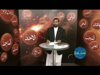 اسماء حسنی (8)