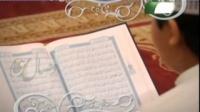 زینت اسلامی