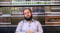 بینش اهل سنت - مسائل مربوط به زنده شدن و محاسبه شدن و دادگاهی - 20/02/2015