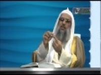 منهاج السنه ( حلی و امامت و فضیلت سبطین2 ) 3-9-2014