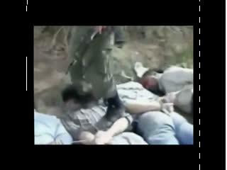 شکنجه و آزار تظاهرکنندگان سوری همچنان توسط نیروهای بشار اسد ادامه دارد!